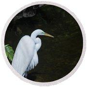 Great White Egret Round Beach Towel