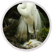 Majestic Great White Egret High Island Texas 3 Round Beach Towel by Bob Christopher