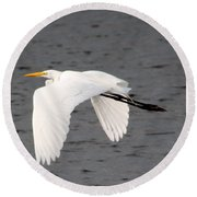 Great White Egret In Flight Round Beach Towel by Laurel Talabere