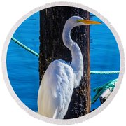Great White Heron Round Beach Towel by Garry Gay