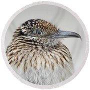 Greater Roadrunner Round Beach Towel