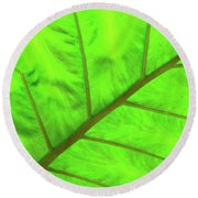 Green Abstract No. 5 Round Beach Towel
