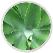 Green Agave Leaves Round Beach Towel