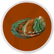 Green And Brown Shell Transparency Round Beach Towel