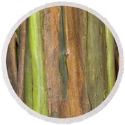 Round Beach Towel featuring the photograph Green Bark 3 by Werner Padarin