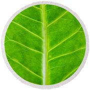 Green Botany -  Part 2 Of 3 Round Beach Towel