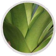 Green Bromelia 1 Round Beach Towel