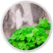 Green Clover And Grey Tree Round Beach Towel by John Williams