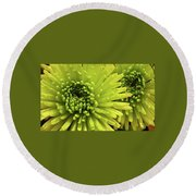 Green Delight Round Beach Towel