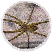 Green Fishing Spider Round Beach Towel