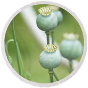 Green Flowers Round Beach Towel