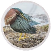 Green Heron 1334 Round Beach Towel
