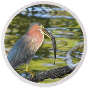 Green Heron With Fish Round Beach Towel