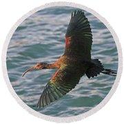 Green Ibis 6 Round Beach Towel