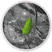 Green Leaf In A Bottle Round Beach Towel