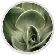 Round Beach Towel featuring the photograph Green Leaves Abstract IIi by Marco Oliveira