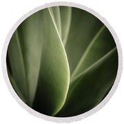 Round Beach Towel featuring the photograph Green Leaves Abstract by Marco Oliveira