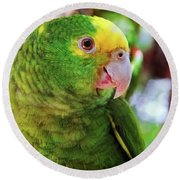 Green Parrot Round Beach Towel
