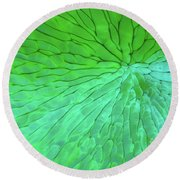 Green Pattern Under The Microscope Round Beach Towel