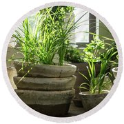 Green Plants In Old Clay Pots Round Beach Towel