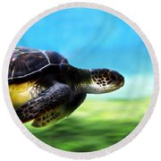 Green Sea Turtle 2 Round Beach Towel by Marilyn Hunt