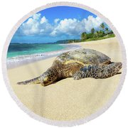 Green Sea Turtle Hawaii Round Beach Towel