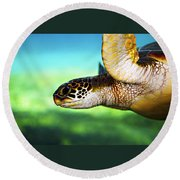 Green Sea Turtle Round Beach Towel by Marilyn Hunt