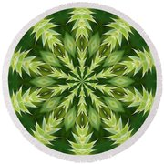 Green Thistle Medallion Round Beach Towel by Shirley Moravec