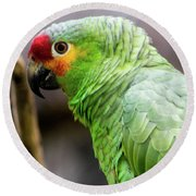 Green Tropical Parrot, Side View. Round Beach Towel
