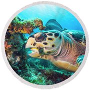 Green Turtle Dining Round Beach Towel