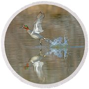 Green-winged Teal Duck Round Beach Towel