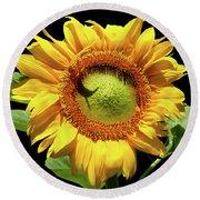 Greenburst Sunflower Round Beach Towel