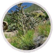 Greening Of The High Desert Round Beach Towel