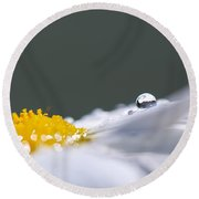 Grey And Yellow Daisy Round Beach Towel