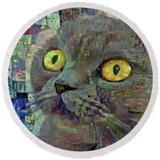 Round Beach Towel featuring the photograph Grey Cat On Blue Abstract Art by Peggy Collins