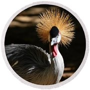 Round Beach Towel featuring the photograph Grey Crowned Crane by Kathy Baccari