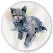 Grey Kitten Round Beach Towel