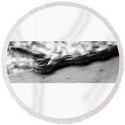 Grey Rat Snake Round Beach Towel