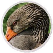 Greylag Goose Portrait  Round Beach Towel by Gary Whitton