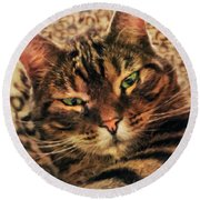 Griffin My Bengal Cat Round Beach Towel