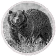 Brutus The Bear Round Beach Towel