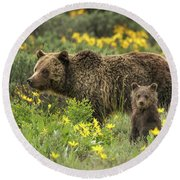 Grizzlies In The Wildflowers Round Beach Towel