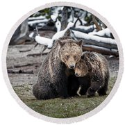 Grizzly Cub Cuddling With Mother Round Beach Towel