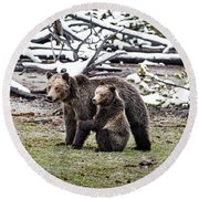 Grizzly Cub Holding Mother Round Beach Towel