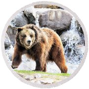 Round Beach Towel featuring the photograph Grizzly Falls by Steve McKinzie