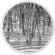 Group Of White Birches Round Beach Towel by Alana Ranney