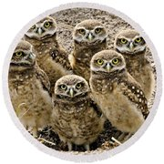 Group Shot Round Beach Towel