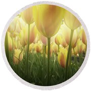 Growing  Tulips  Round Beach Towel