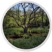Growning From The Marsh Round Beach Towel