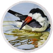 Gulf Coast Black Skimmer Round Beach Towel